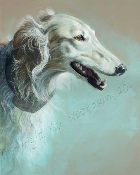 Hunter, silken windhound portrait