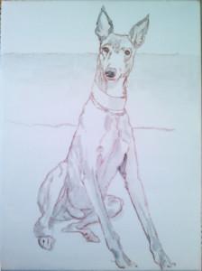 """Shawn - in progress acrylic on canvas,  9"""" x 12"""" © Xan Blackburn"""