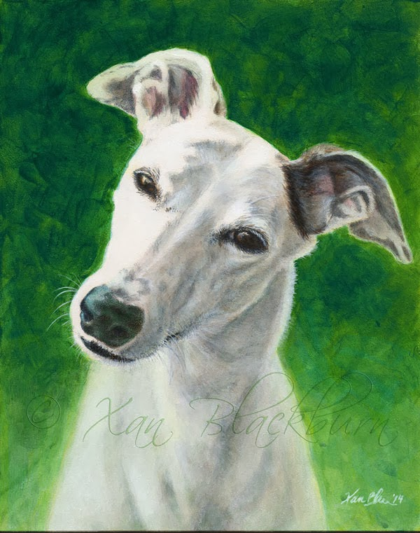 Greyhound Katie's Portrait: Done
