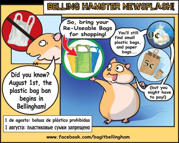 Bag Ban info graphic