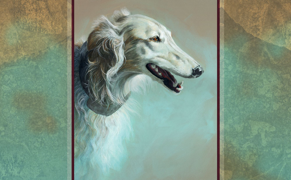 Hunter silken windhound portrait