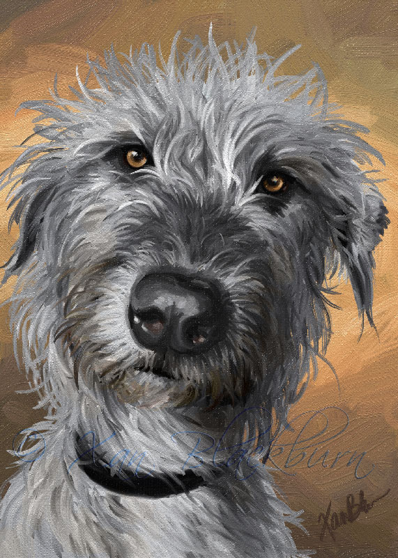 Roheen, Irish Wolfhound, Done!