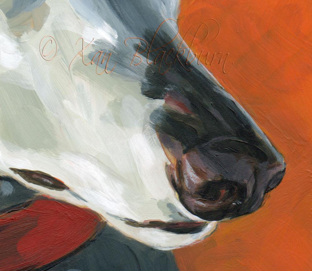 Sadie (detail - muzzle)