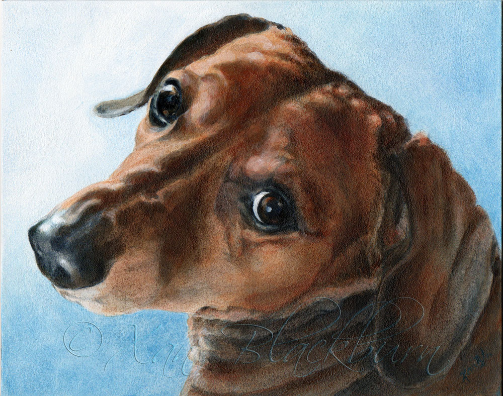 Scooby (Dachshund) Acrylic on Panel, 10