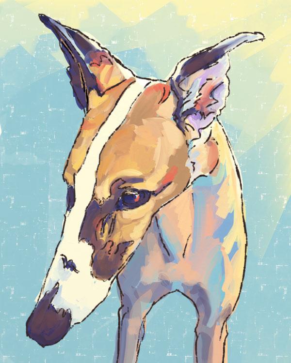 Cole - Artrage sketch