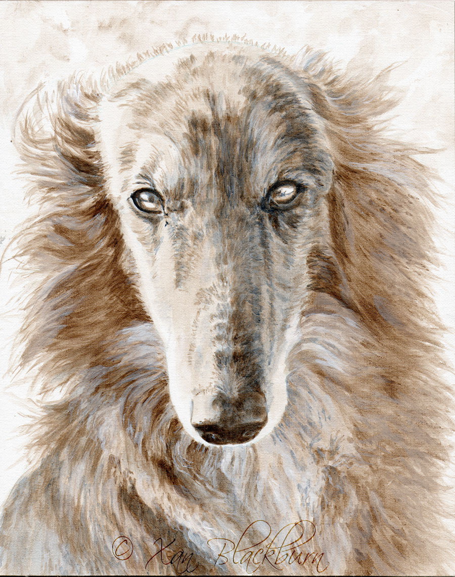 """Feyd"" silken windhound portrait, work in progress, stage 4 8"" x 10"" acrylic on canvas panel © Xan Blackburn"